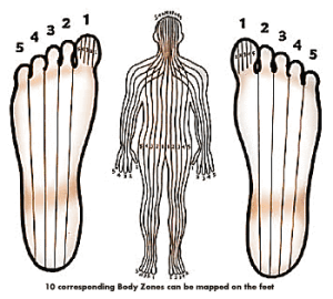 bodyzones mapped on foot