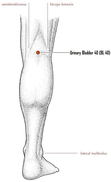 Back of Knee Point to control diabetes