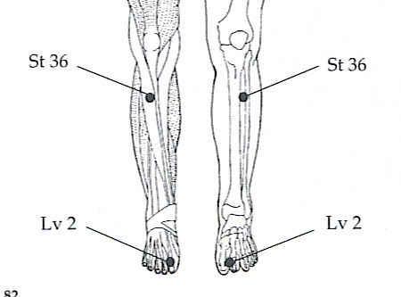 Leg Three Mile Point