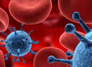 Red cells virus