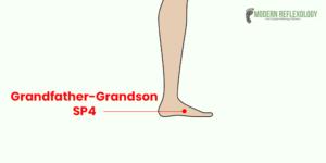 Grandfather-Grandson