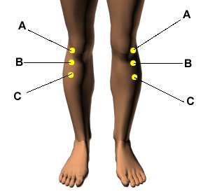 knee pain acupressure points