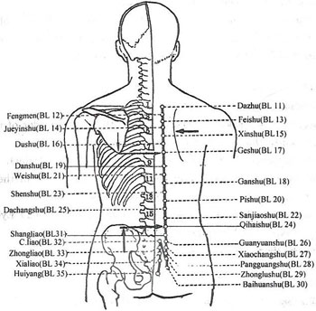 Bladder 18 acupressure point