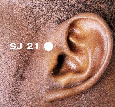 Ear-gate