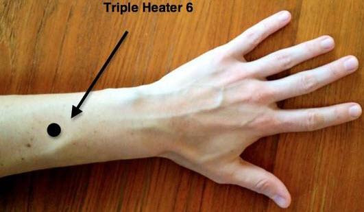 Triple Warmer 6