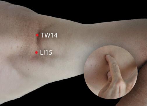 TW 14, LI 15