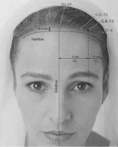 GB 13 acupressure point