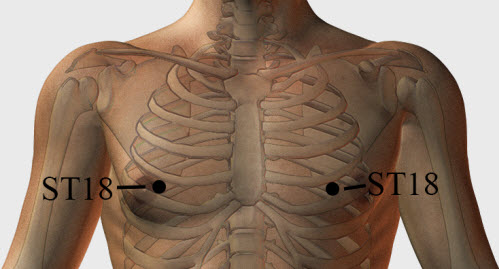 Stomach Meridian 18 or Breast Root