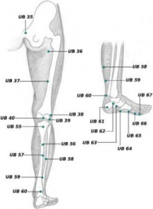UB 55 acupressure point