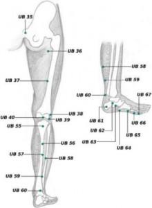 UB 55 acupressure point