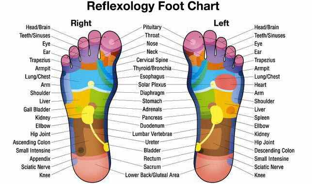 Top 7 Myths about Reflexology Treatment and Benefits