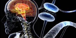 Relief from Symptoms of Parkinson