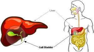 symptoms-of-gall-bladder-problems