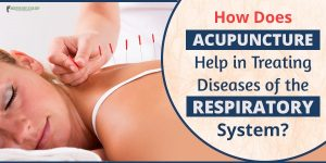 banner-respiratory -system