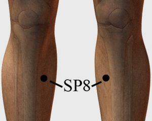 acupressure-point-SP8