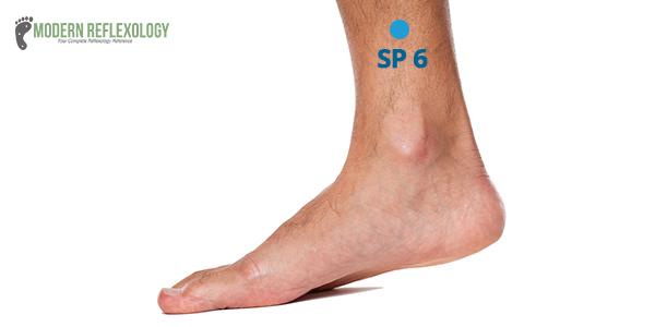 Acupoint5: SP-6