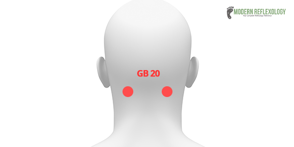 Gallbladder Channel: GB20, Fengchi