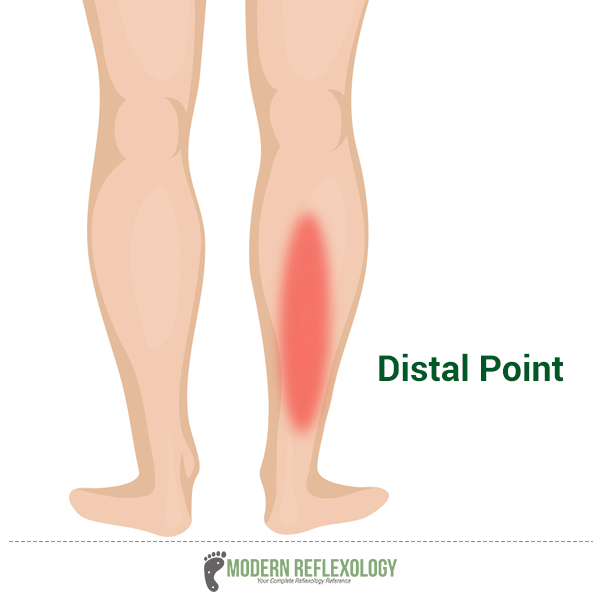 Distal Point