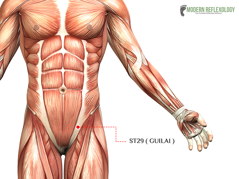 ST29 (Guilai) acupuncture point