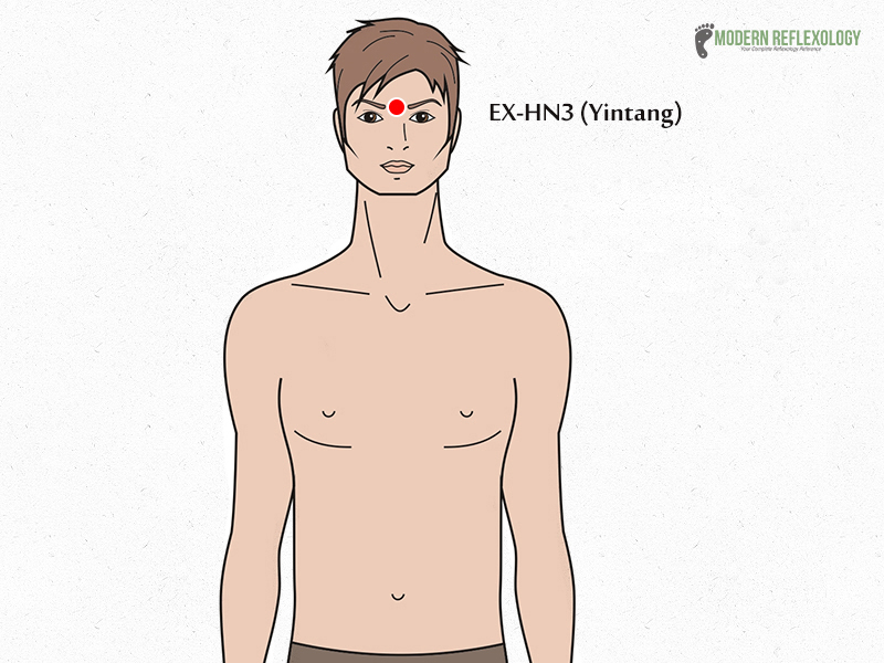 EX-HN3-Yintang Acupressure Points