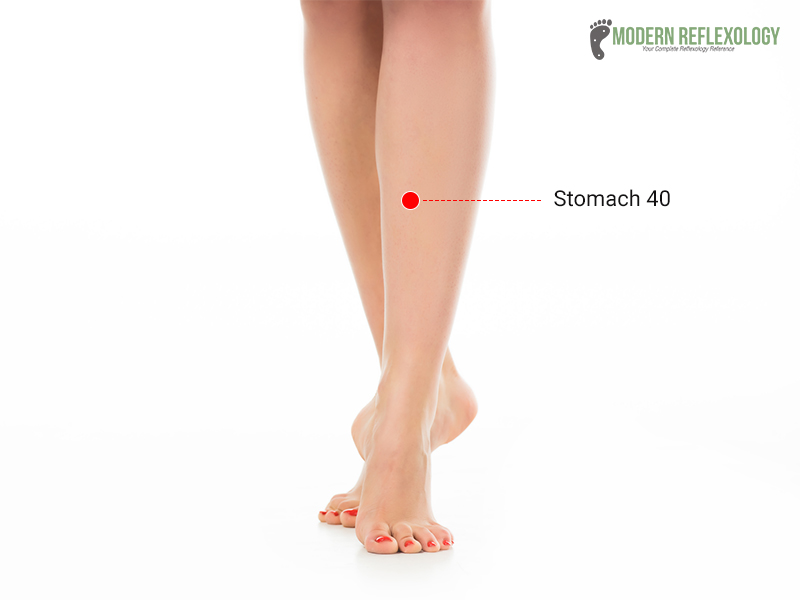 Stomach 40 Point (ST40) pressure points