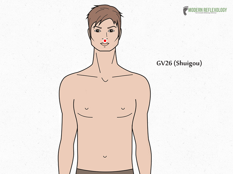 GV26 (Shuigou) acupuncture point