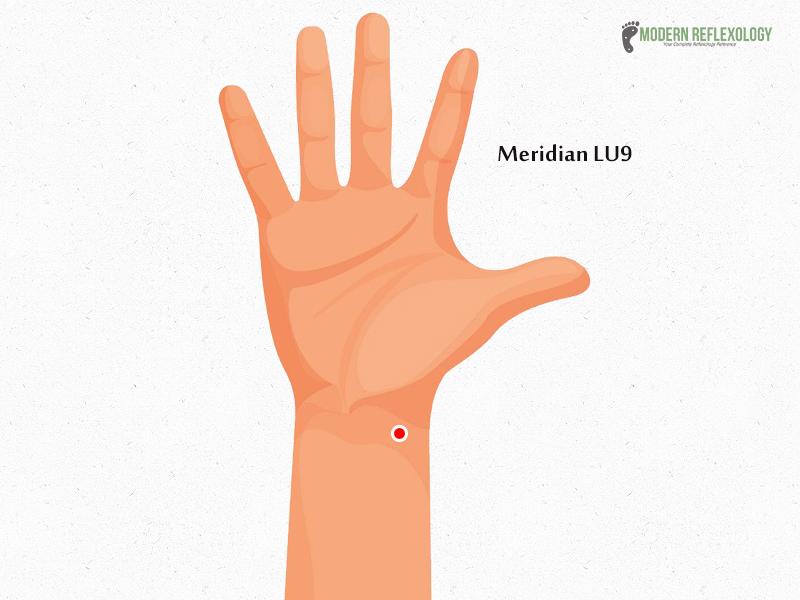 Meridian LU9
