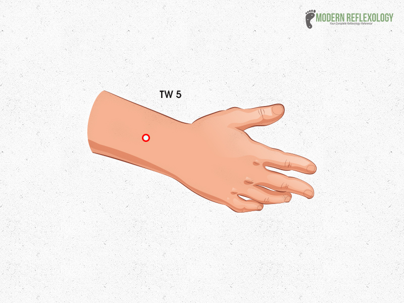 TW5 - Acupuncture points for Ankylosing Spondylitis