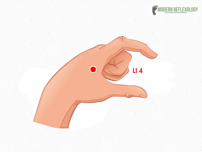LI4 (acupuncture point