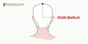 DU20 (Baihui)